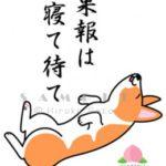 郵政グループ新規上場・・NTT株を思い出そう