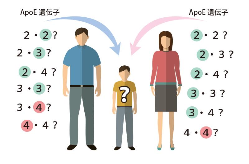 apoe-family