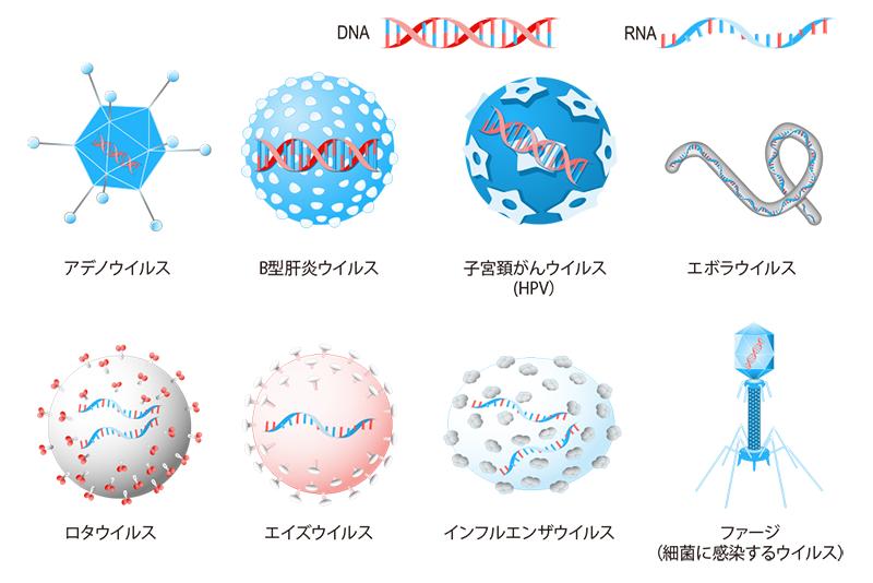 virus-image