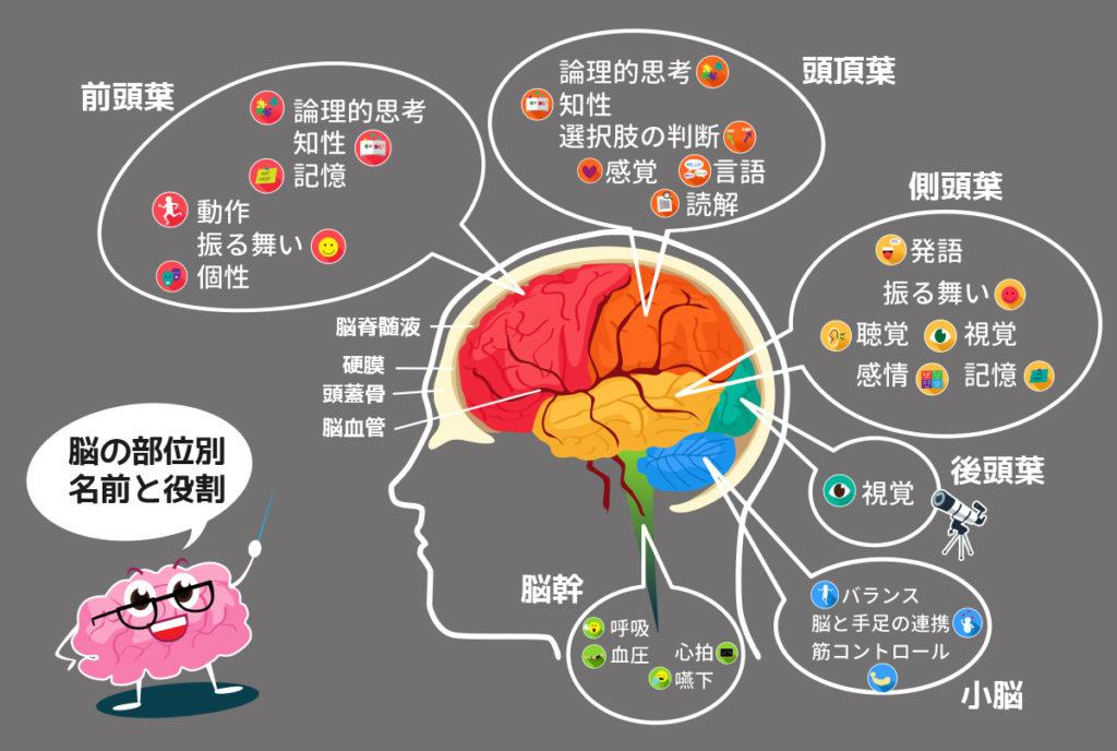 brain-work