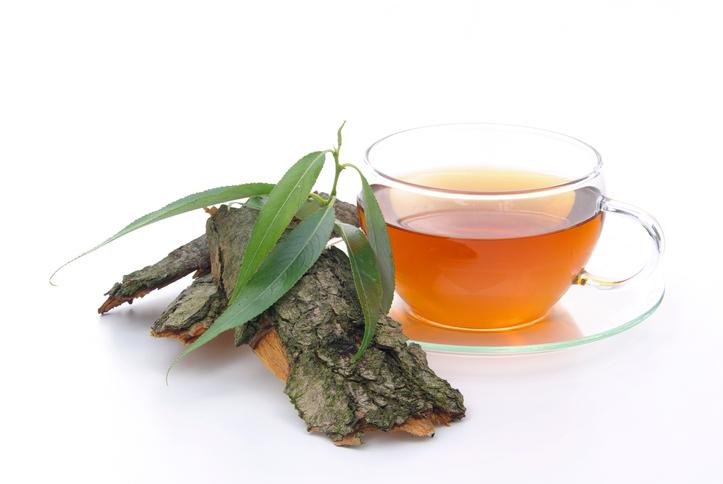 tea willow