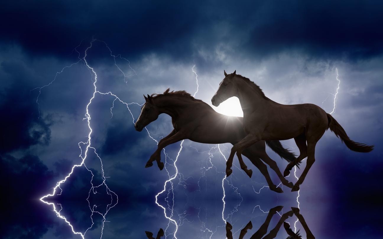 Horses and lightnings