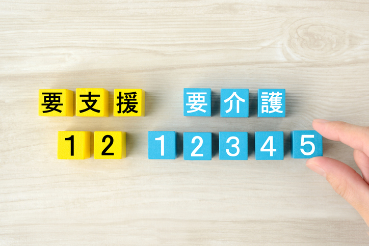 Nursing care level in Japan by wooden blocks