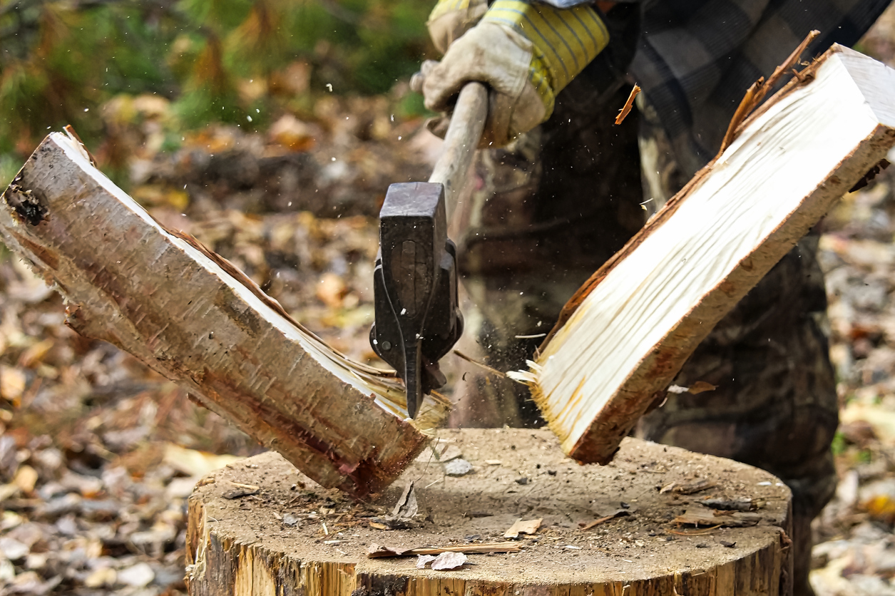 Task of splitting campfire wood while hunting