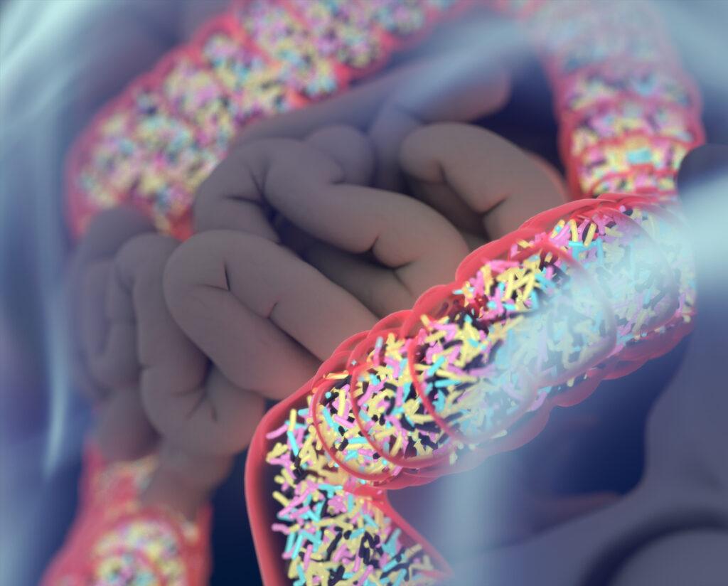 【お薦め本の紹介】これは参考になる!『血糖値は「腸」で下がる』